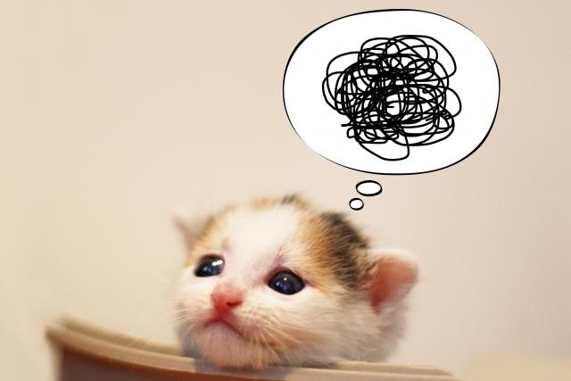英語の勉強をやり直したい社会人必見!コレをやらずに進めると挫折します