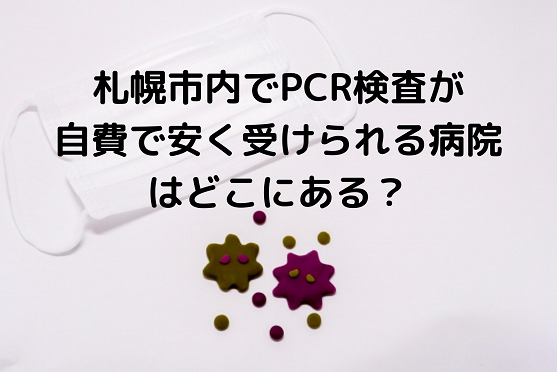 札幌市内でPCR検査が自費で安くできる病院を調べてみた!
