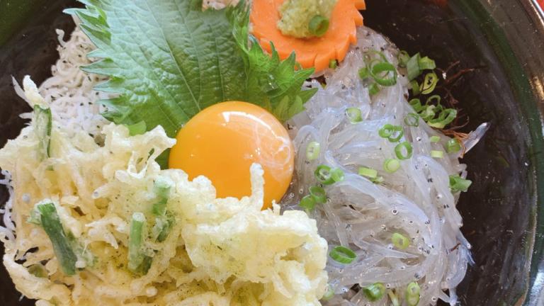 篠島ランチのおすすめ!ちりめん亭のしらす丼タイチサン