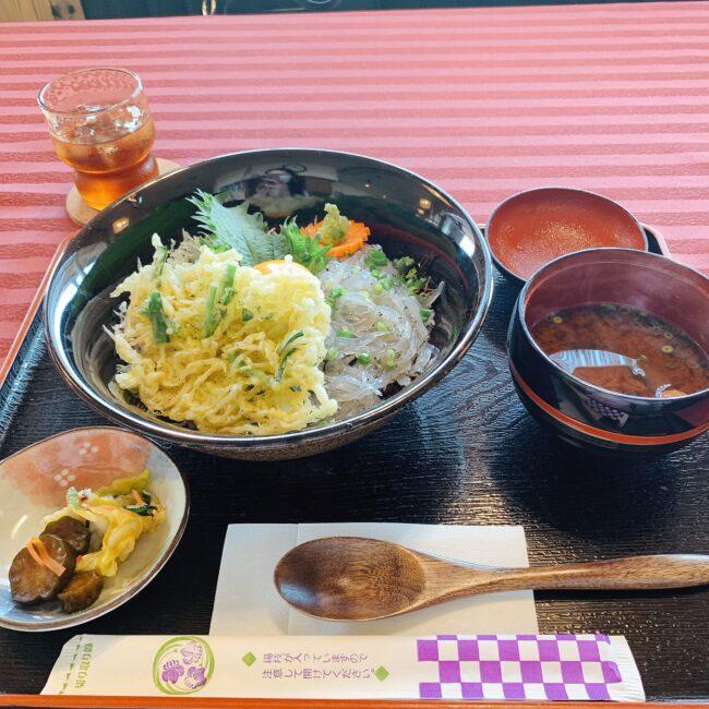 タイチサン篠島ランチにおすすめ♪ちりめん亭の美味しい「しらす3色丼」実食レポ