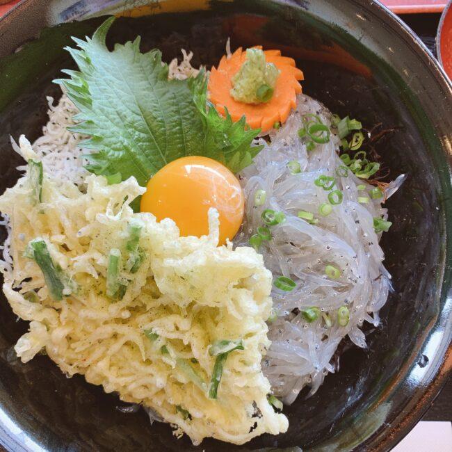 篠島ランチにおすすめ♪ちりめん亭の美味しい「しらす3色丼」実食レポ